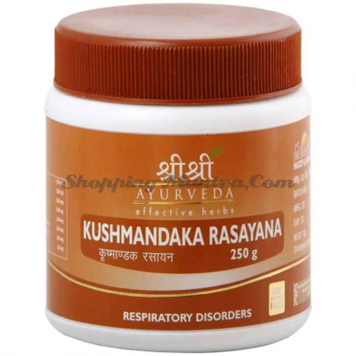 Кушмандака Расаяна для респираторных проблем Шри Шри Аюрведа (Kushmandaka Rasayana)