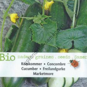 """Огурцы сорт """"БОЛЬШЕ РЫНОЧНЫХ""""(Marketmore BIO) 65 семян"""