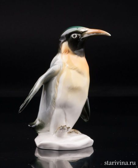 Изображение Королевский пингвин, Karl Ens, Германия