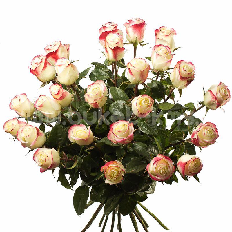 """Букет из 25 роз """"Свитнесс"""" c доставкой в Комсомольске"""