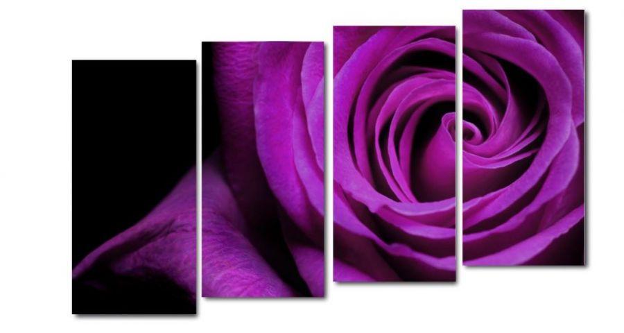 Модульная картина Фиолетовая роза