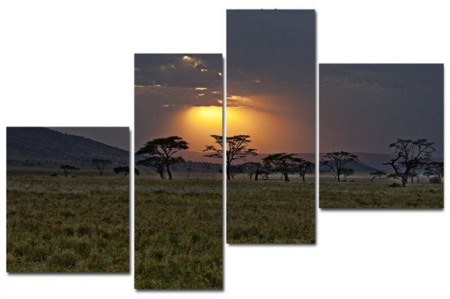 Модульная картина Африка