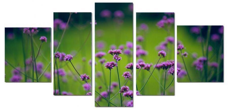 Модульная картина Полевые цветы