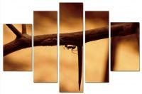Модульная картина Колючая ветвь