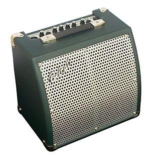 Усиление для акустических гитар