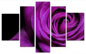 Модульная картина Пурпурная роза