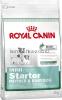 Royal Canin MINI Starter для щенков