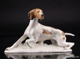Охотничья собака, Hutschenreuther, Германия, вт. пол. 20 в., артикул 01269