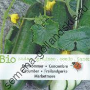 """Огурец сорт """"БОЛЬШЕ РЫНОЧНЫХ""""(Marketmore BIO) 10 семян"""
