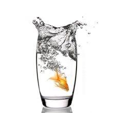"""""""Золотая рыбка"""" гиммик для фокуса с рыбкой"""
