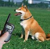 Электроошейник для тренировки собак