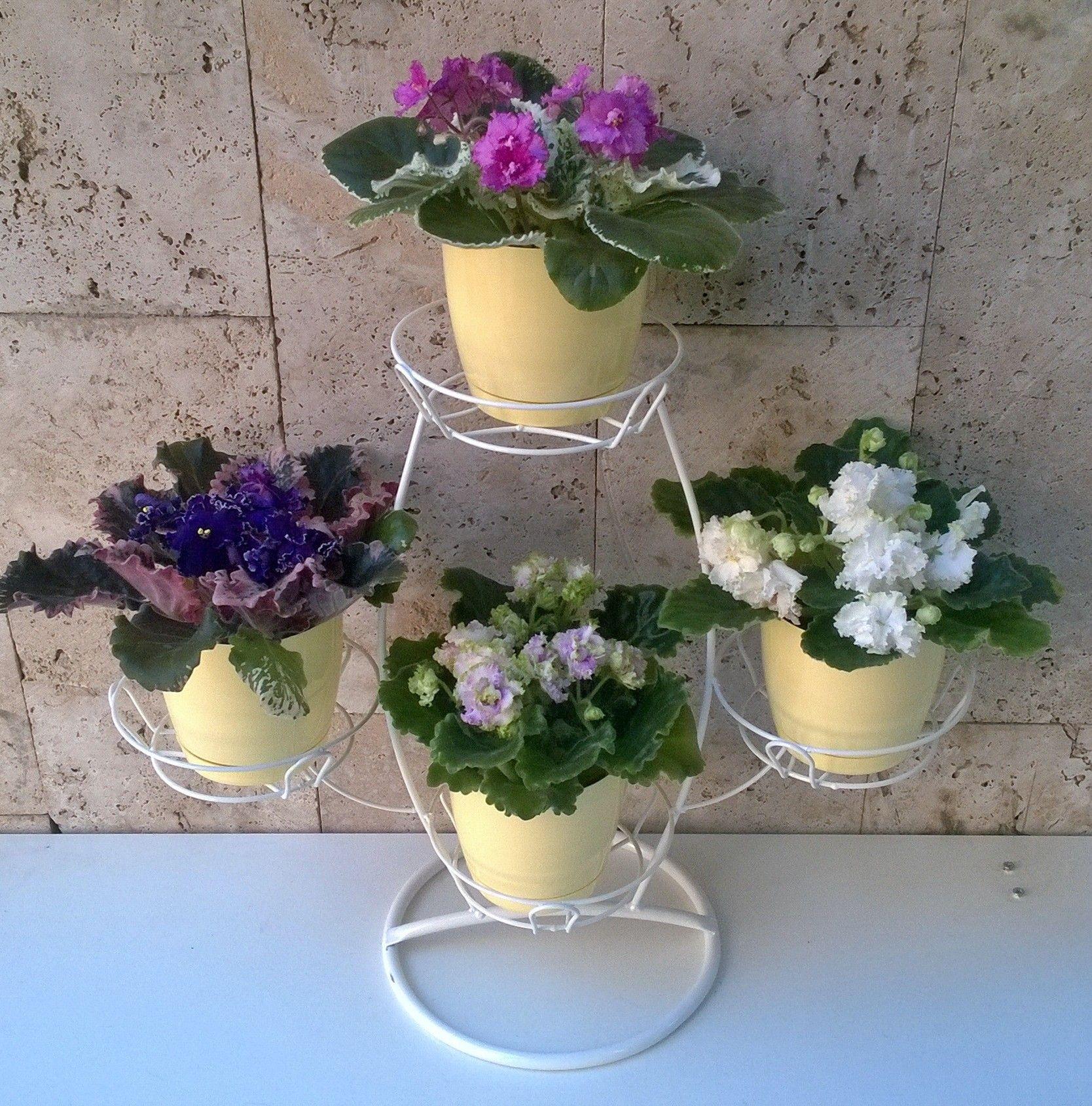 "Подставка ""Баобаб"" на 4 цветка"