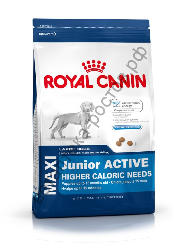 Royal Canin для щенков Maxi Junior Active