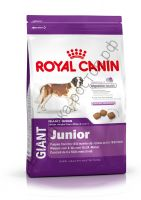 Royal Canin для щенков Giant Junior