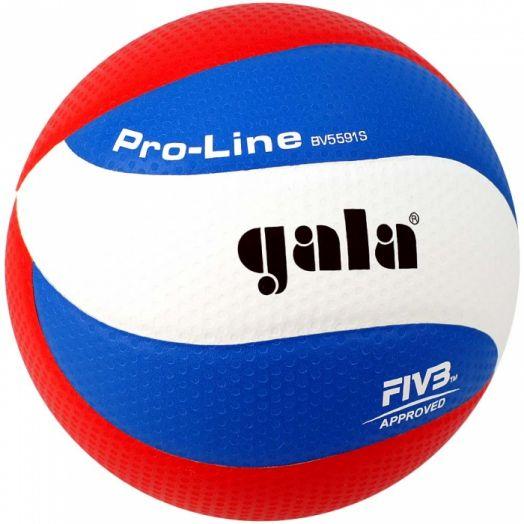 Волейбольный мяч GALA Pro-Line 10 FIVB