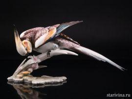 Попугай корелла, Hutschenreuther, Германия., артикул 01548
