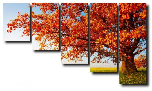 Модульная картина Солнечная осень