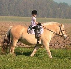 Детские и для пони