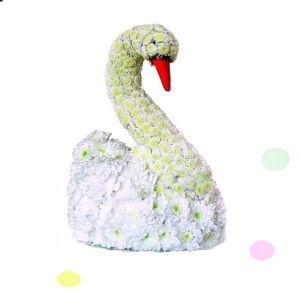Лебедь из свежих цветов