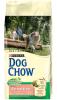 Dog Chow для собак с чувствительным пищеварением