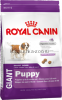 Royal Canin Giant Puppy для щенков с 2 до 8 месяцев