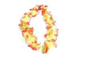 Гавайская Лея