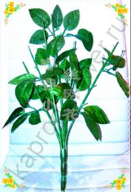 Стебель розы с листьями
