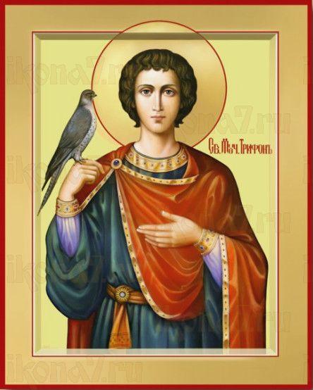 Икона Трифон Апамейский (рукописная)