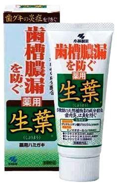072752 Паста зубная для профилактики заболевание десен Японский Кипарис и Белая Береза, 100гр