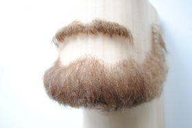 Борода полная густая с усами под заказ