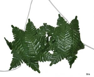 Лифчик гавайский из листьев