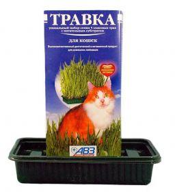 Травка для кошек в лотке (170 г)