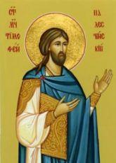 Тимофей Палестинский (рукописная икона)