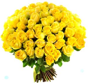 51 и 101 желтая роза 60 см.