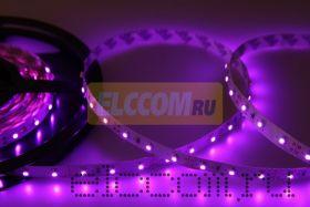 LED лента открытая, IP23, SMD 3528, 60 диодов/метр, 12V, цвет светодиодов розовый