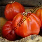 """Томат """"ПИРСОН"""" (Pearson) 10 семян"""