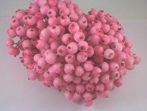 Ягоды в сахарной обсыпке 12 мм (длина 16см). 1 уп = 400 ягодок, Арт. ЯГ0011