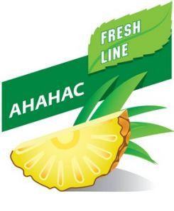 Е-жидкость 60мл.. BestSmoking FreshLine - Ананас