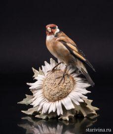 Щегол на цветке, Kaiser, Германия, сер. 20 в., артикул 02133