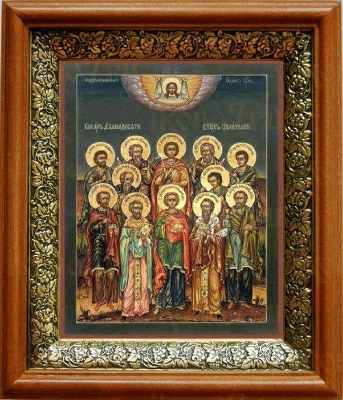 Собор 12 целителей (19х22), светлый киот