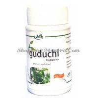 Гудучи в капсулах для повышения иммунитета Джайн Аюрведик / Jain Ayurvedic Guduchi Capsules