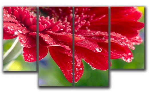 Модульная картина Красная гербера