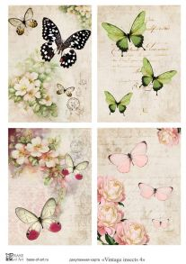 Vintage insects 4