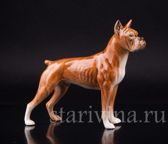 Фарфоровая статуэтка собаки Боксер производства Goebel, Германия