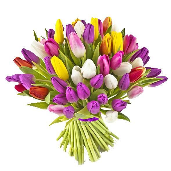 Букет 75 тюльпанов