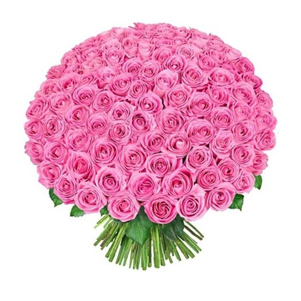 Букет 101 розовая роза