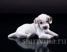 Лежащий щенок, Rosenthal, Германия, 1937 год., артикул 02442