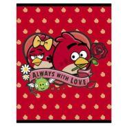 Тетрадь 48 л. кл. флок Hatber Angry Birds выпуск №4 48Т5флВ1