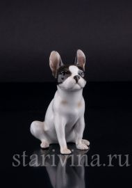 Сидящий бостонский терьер, миниатюра, Германия., артикул 02469