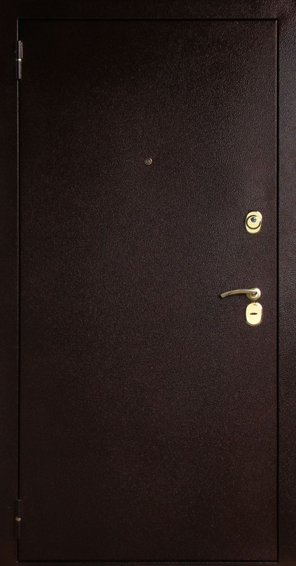 Металлическая дверь Соломон